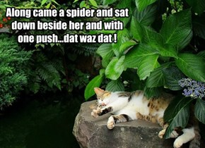 Along came a spider and sat down beside her and with one push...dat waz dat !