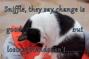 Sniffle, they say change is good                          but losing friends isn't.........