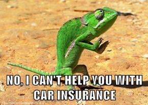 NO, I CAN'T HELP YOU WITH CAR INSURANCE