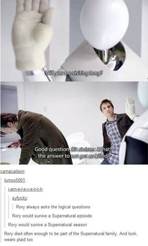 Rory Williams Can Survive Any TV Show