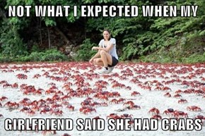 NOT WHAT I EXPECTED WHEN MY  GIRLFRIEND SAID SHE HAD CRABS