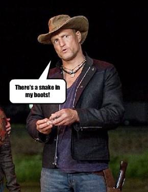 Wrong Woody