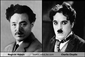 Noguchi Hideyo Totally Looks Like Charlie Chaplin