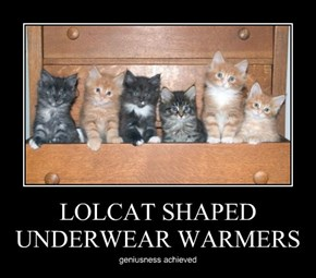 LOLCAT SHAPED UNDERWEAR WARMERS
