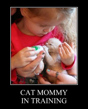CAT MOMMY IN TRAINING