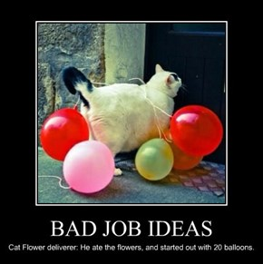 BAD JOB IDEAS