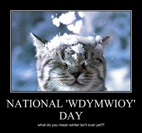 NATIONAL 'WDYMWIOY' DAY