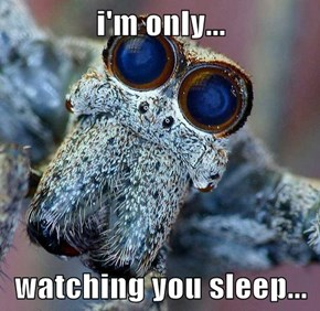 i'm only...  watching you sleep...
