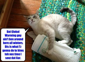 Dat Global Warming guy ain't ben around here all winters. Dis is what I'z gonna do to hims teh nex time I seez dat liar.