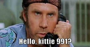 Hello, kittie 991?