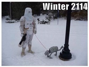Winter 2114