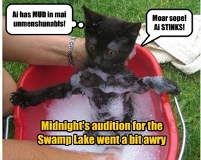 Midnight's audition for the  Swamp Lake went a bit awry