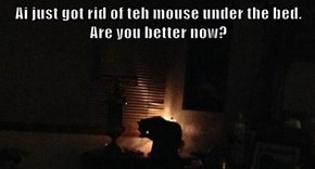 Ai just got rid of teh mouse under the bed. Are you better now?