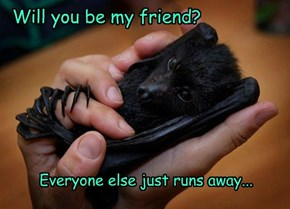 Have you hugged your bat today?
