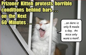 60 Minutes: Kittehs Behind Bars!