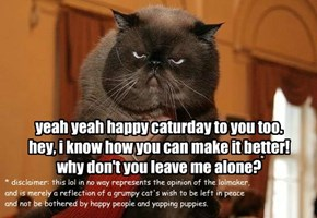 yeah yeah happy caturday to you too. hey, i know how you can make it better! why don't you leave me alone?