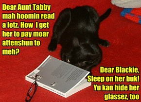 Dear Aunt Tabby mah hoomin read a lotz. How  I get her to pay moar attenshun to meh?