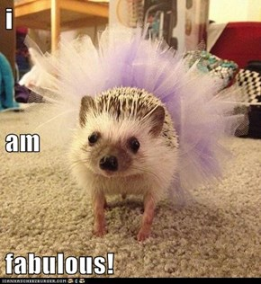 i am fabulous!
