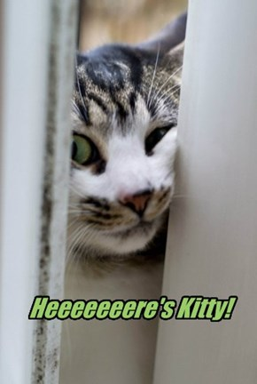 Heeeeeeere's Kitty!