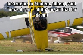 "Instructor to Student: When I said ""nose down"", I didn't mean that far down!"