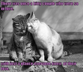 There was once a kitty couple who were so in love.   with just a glance everyone knew  of their love.