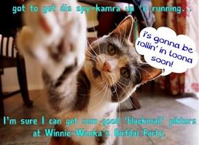 Winnie-Wonka's Birfdais alwais gets a little crazy