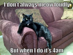I don't always meow loudly  But when I do it's 4am