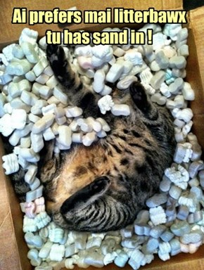 Ai prefers mai litterbawx tu has sand in !