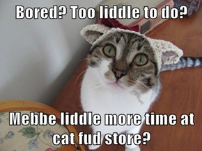 Bored? Too liddle to do?  Mebbe liddle more time at cat fud store?