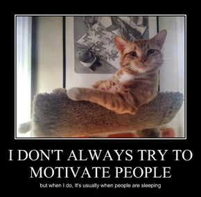 I DON'T ALWAYS TRY TO MOTIVATE PEOPLE