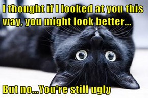 I thought if I looked at you this way, you might look better...  But no...You're still ugly