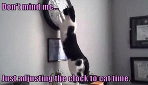 Don't mind me...  Just adjusting the clock to cat time.