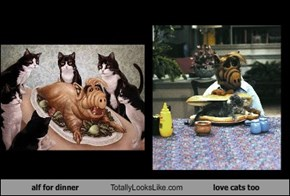 alf for dinner Totally Looks Like love cats too