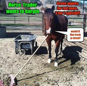 Horse  Trader wants to bargin