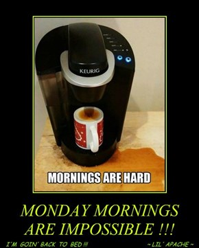 MONDAY MORNINGS ARE IMPOSSIBLE !!!