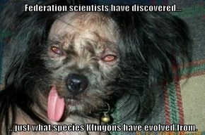 Federation scientists have discovered...  ...just what species Klingons have evolved from.