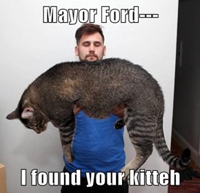 Mayor Ford---  I found your kitteh