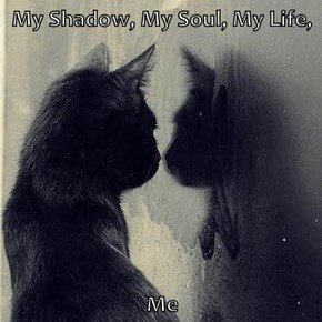 My Shadow, My Soul, My Life,  Me