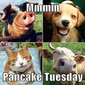 Mmmm  Pancake Tuesday
