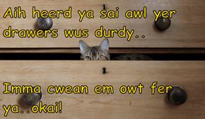 Aih heerd ya sai awl yer drawers wus durdy..  Imma cwean em owt fer ya..okai!
