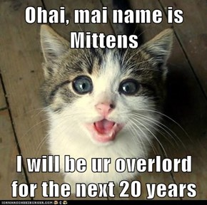 Ohai, mai name is Mittens  I will be ur overlord for the next 20 years
