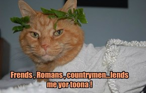Frends , Romans , countrymen...lends me yor toona !