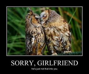 SORRY, GIRLFRIEND
