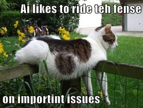Ai likes to ride teh fense  on importint issues