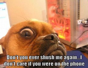 Don't you ever shush me again...I don't care if you were on the phone