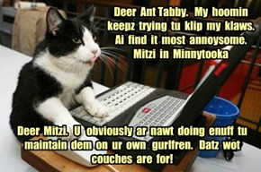 Deer  Ant Tabby.   My  hoomin keepz  trying  tu  klip  my  klaws.  Ai  find  it  most  annoysome.  Mitzi  in  Minnytooka