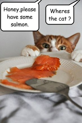 Honey,please have some salmon.