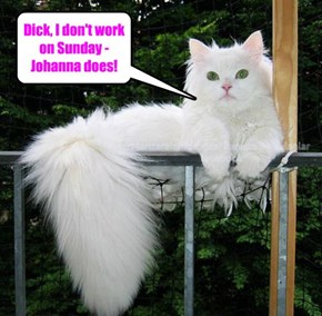 d*ck, I don't work on Sunday - Johanna does!