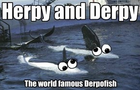 Herpy and Derpy