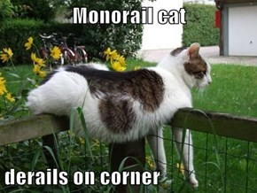 Monorail cat  derails on corner